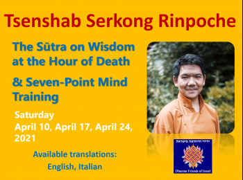 The Sūtra on Wisdom at the Hour of Death  & Seven-point Mind Training -Tsenshab Serkong Rinpoche